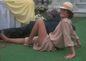 Stephanie Zimbalist as Laura Holt in the 1980s TV series, Remington Steele always looked amazing in sheer nude or suntan pantyhose.